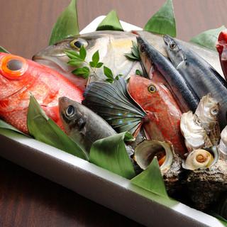 築地直送の鮮魚を浜焼き・刺身でお楽しみください!