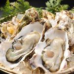 べいらっきょ - 広島県産牡蠣