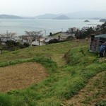 シーズホーム - 長崎県西海市から届く新鮮野菜