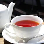 スプルース - 紅茶