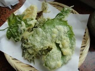 たけのこ - 山菜天ぷら