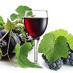 koreAn diNing GOMAmura - ポリフェノールで抗酸化アンチエイジング!ワインを飲もう~