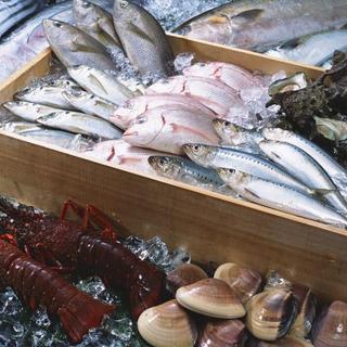 串かつはもちろんの事毎日入荷する新鮮な魚介類は要チェック!