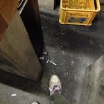 大衆酒場 よっちゃん - タバコの吸い殻は床に捨てちゃえばい良いルールです(私は吸わない人)