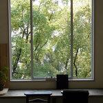 cocoo cafe - 大きな窓からの緑に癒されて・・・