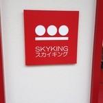スカイキング -