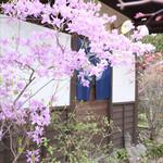 古守宿一作 - (2014.04)