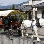 グランマ - 湯布院の馬車