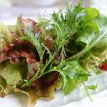 27019572 - 野菜サラダ