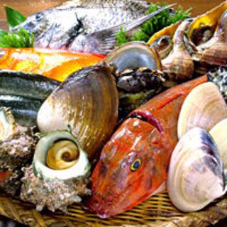 【魚】…旬の食材を使った漁師の家めし『漁師料理』