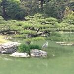 竹清 - 付近の観光スポット、栗林公園のひとコマ。鶴が見事になじんでいるので置物かと思ったら、本物。