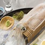 きら・柊 - 半透明のイカは新鮮さの証『呼子産イカのお造り(小・中・大)』