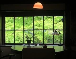 茶房 天井棧敷 - 新緑がとても綺麗でした