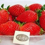 石井農園 Erdbeere - やよいひめ 860円(2014/2)(^^b 苺らしい味です(^^b