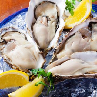 北海道産生牡蠣や活帆立、活ツブなど新鮮魚介と地中海料理を満喫