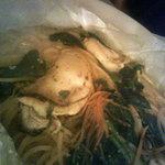 2732082 - 牡蠣とホウレンソウのさらさらクリームスパゲティ