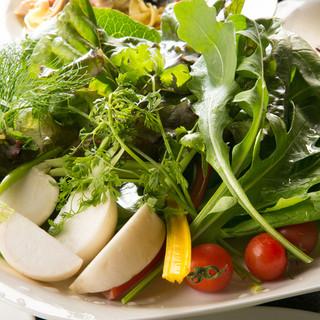 ランチから自家菜園から毎日採れたての新鮮野菜が食べられます!