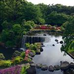 ガーデンラウンジ - 庭園の眺望