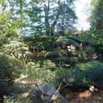 274671 - 庭から見た外観