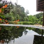 27415309 - 水鉢越しに庭園を眺めてみる。