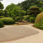 27415337 - 庭園。輪郭が周囲に溶け出すような感覚。