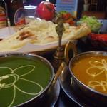 サプナ - 料理写真:カレーの種類が豊富