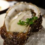 ガレージサンキュー - 岩牡蠣