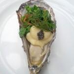 Resutoranyamanekoken - 前菜の牡蠣