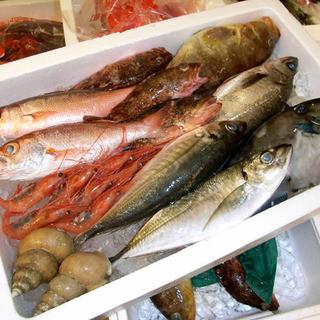 魚は地物、朝採れ鮮魚のみ使用!