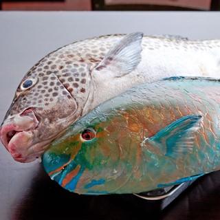 沖縄の地魚をセリ市場より直送!