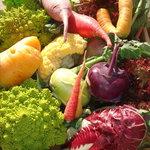カポディモンテ - 冬野菜、どんどん入荷してます