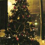 ぞうさん食堂 - 巨大クリスマスツリー!!中から・・・