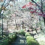 青山亭 - 紅葉の季節