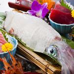 きじま赤門 - 料理写真: 玄海盛り・いかアップ