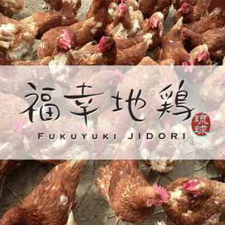 新!沖縄県産ブランド≪福幸地鶏≫