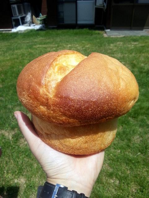 パン工房 PANE イタリアのキッチンより -  きのこパン