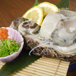鳥勝 - 《夏季限定天然岩牡蠣》もみじおろしで☆