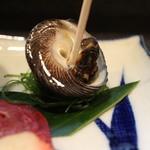 割烹 万田作造 - 料理写真:お通し貝拡大
