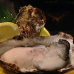 27852580 - 生牡蠣