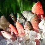 琉球島料理 田芋 - 色とりどり県産魚