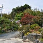 暁山 - 庭@2009/10/17