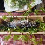 森のおみやげ屋 - 岩魚の炭火焼
