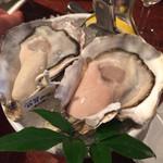 Oyster Bar ジャックポット - 白方
