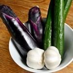 肉彩 でこ - 泉州の水茄子を始め、新鮮で美味しい野菜を使用しています。