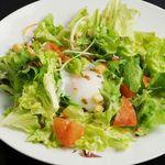 全席個室居酒屋 若の台所~こだわり野菜~ - 温泉卵のシーザーサラダ/明太のポテマヨサラダ
