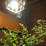 割烹 大力 - 入ったところの灯りの下に、夏萩が