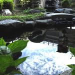 まほろばの里 大蔵 - 1階の個室から見える池には、複数の鯉が優雅に泳いでいます