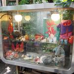 金魚CAFE - 金魚たち