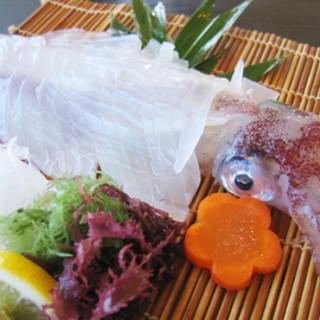 自慢の生簀より活魚!!写真は泳ぎスルメイカの活け造り◎
