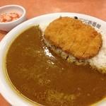 CoCo壱番屋 - 料理写真:印度カレーライス 614円 +ロースカツ258円☆(第二回投稿分①)